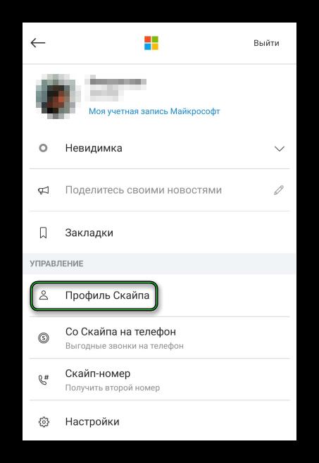 Кнопка Профиль Скайпа в Skype