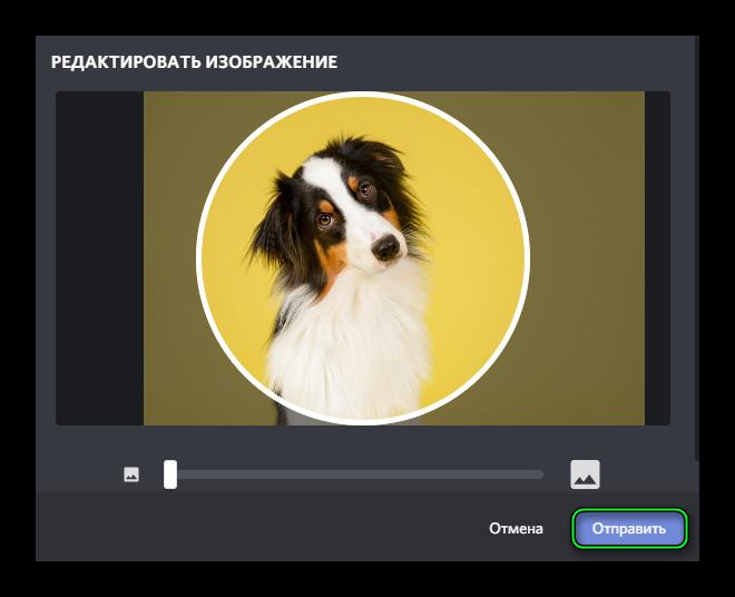Кнопка Отправить для аватара в Discord