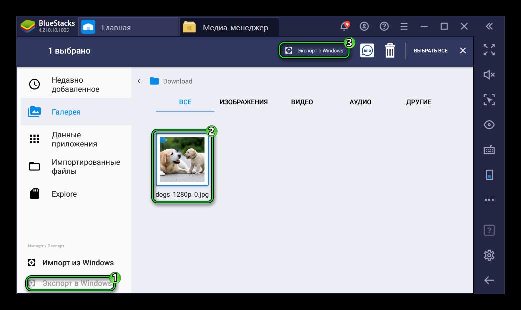Опция Экспорт в Windows в эмуляторе BlueStacks