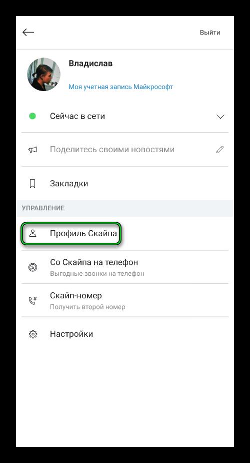 Пункт Профиль в мобильном приложении Skype
