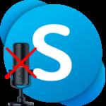 Как разговаривать в Скайпе без микрофона