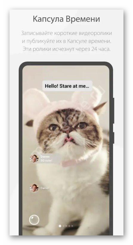 Картинка Капусла времени в WeChat