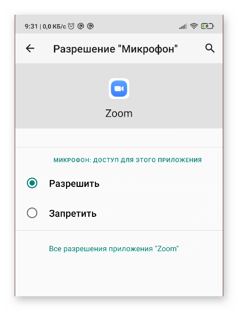 Разрешить приложению Zoom доступ к микрофону