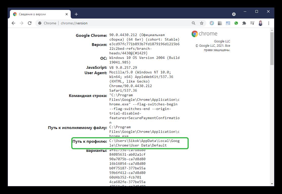 Сведения о версии Google Chrome Путь к профилю Windows
